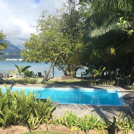 Pool - Cerf Tropical Sanctuary Photo