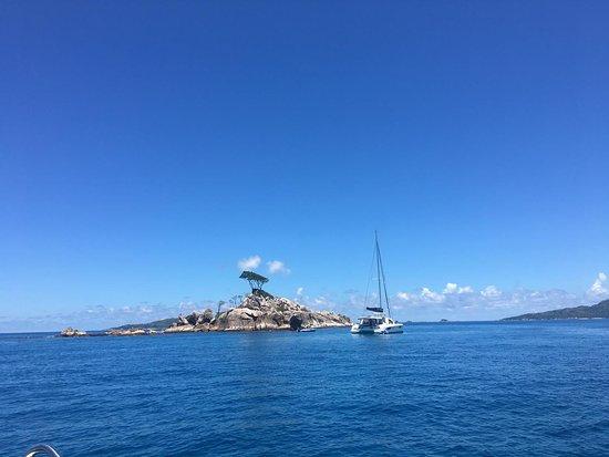 Anse la Blague, Îles Seychelles : Schnorcheln