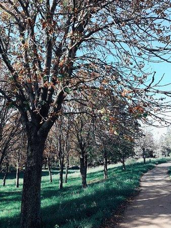 Parco ideale in tutte le stagioni