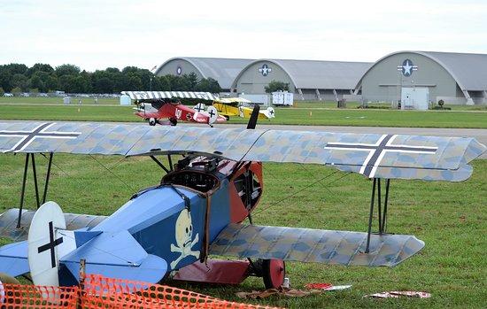 Three Fokker D VII's