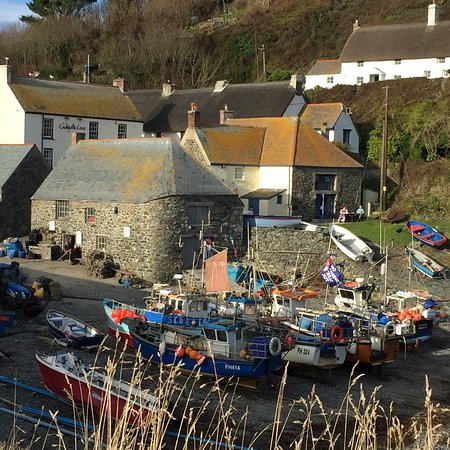 Cadgwith Picture
