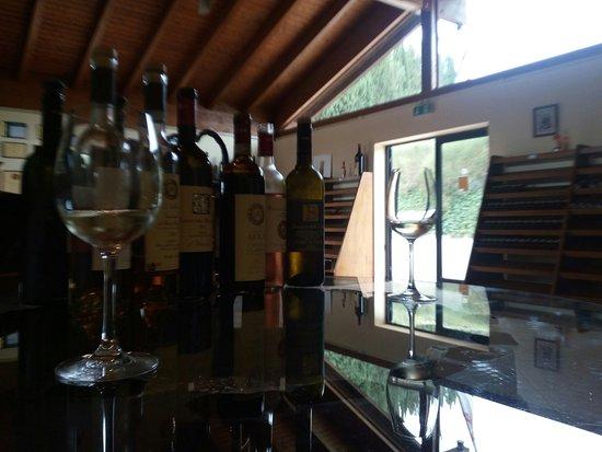 Моя дегустация. Кьянти классико неск. сортов, белое, вино из заизюмленного винограда и бренди.