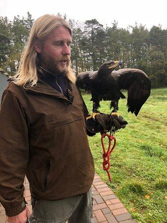 Strathblane, UK: Graeme's incredible step eagle