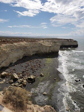 Loberia de Punta Loma: 20181028_160007_large.jpg
