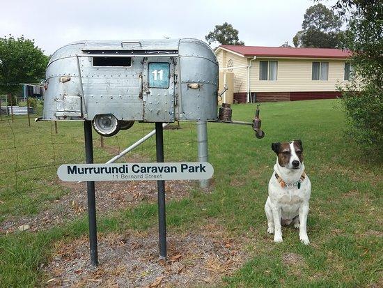 Entrance to dog friendly Murrurundi Caravan Park