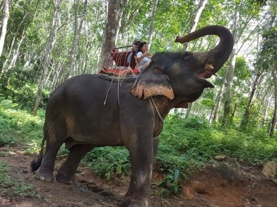 Ảnh về Phuket SRC Travel - Day Tours