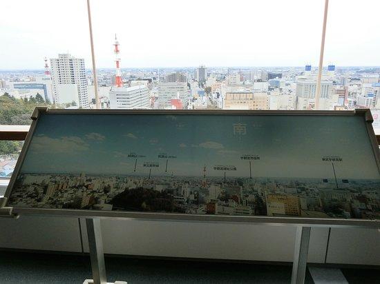Tochigi Prefectural Office Photo