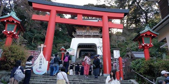 Great tour near to Tokyo