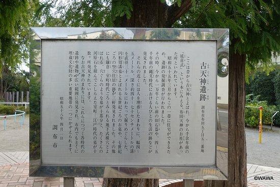 Chofu, Japón: DSC09347_large.jpg