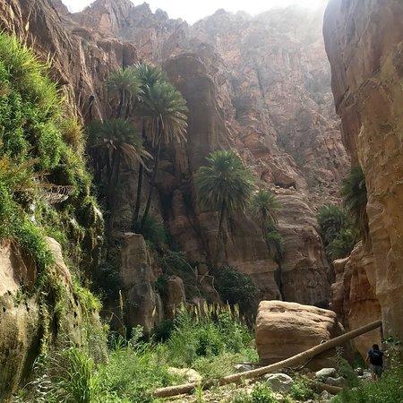 Wadi Ghuweir: photo1.jpg