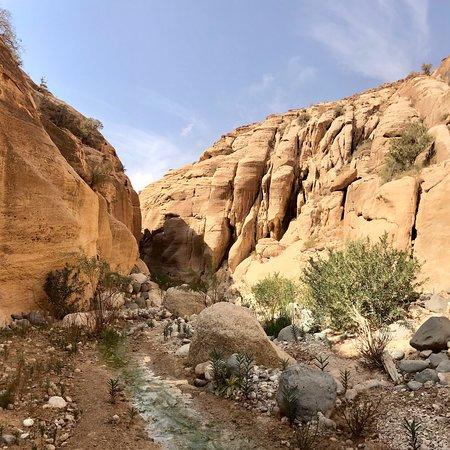 Wadi Ghuweir: photo2.jpg