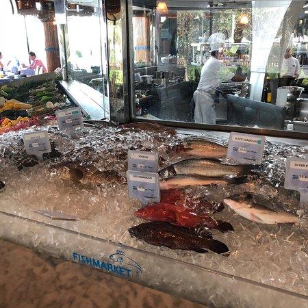 Fishmarket: photo2.jpg