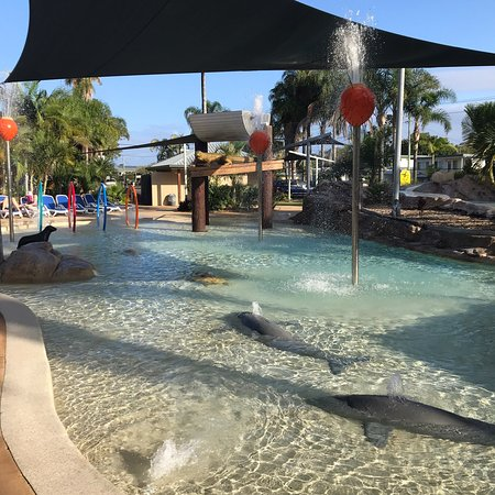 Pool - Blue Dolphin Holiday Resort Picture
