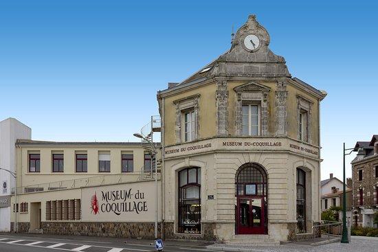 Museum du Coquillage