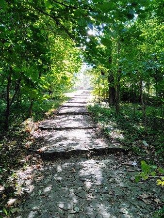 Valea Trandafirilor Park
