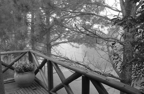 Villa Flor Ecoresort: Vista da sacada, inverno.