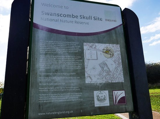 Swanscombe, UK: rather tired information board