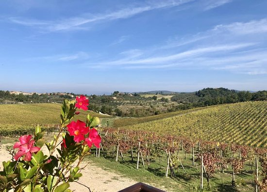 Small-Group Wine Tasting Experience in the Tuscan Countryside: View from the first stop