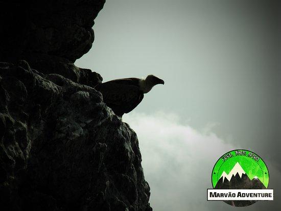 Marvao Adventure