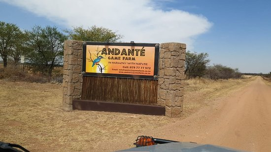 Mookgophong, South Africa: Andante Game Farm