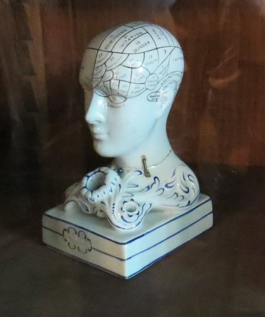 Morrin Centre: Apparently phrenology was a part of the curriculum when the Morrin Center was a college.
