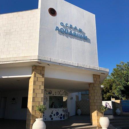 Ocean Aquarium: photo0.jpg