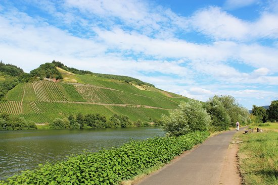 """Moselsteig-Seitensprung ,,Longuicher Sauerbrunnen"""""""