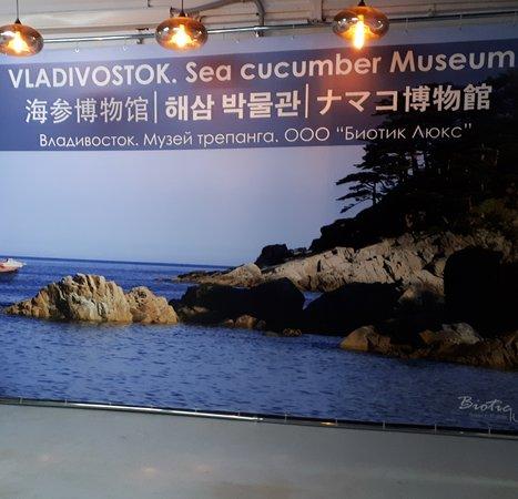 Sea Cucumber Museum