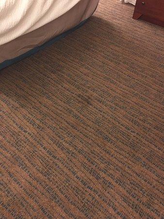 Residence Inn by Marriott Long Beach Downtown : Sticky stain