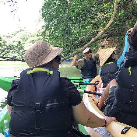 Eco Tour in Mangroves