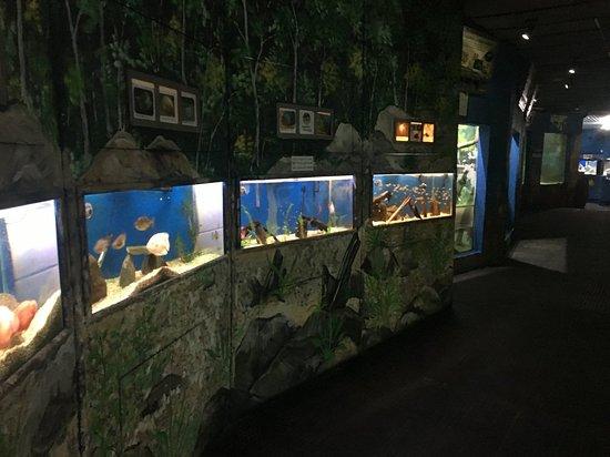 Aquario de Peruibe