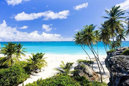Excursión turística por la playa...