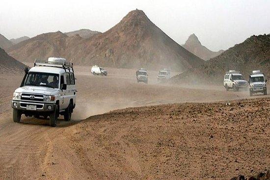 Camelo e praia Buggy Desert Safari em...