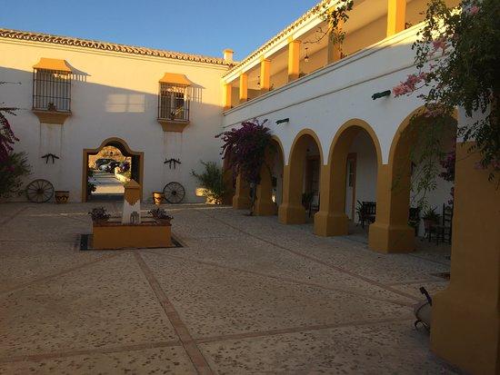 Hacienda la Morena: The courtyard