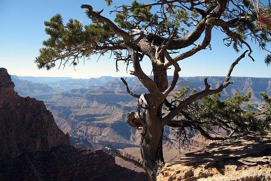 Grand Canyon Hike con Sedona e