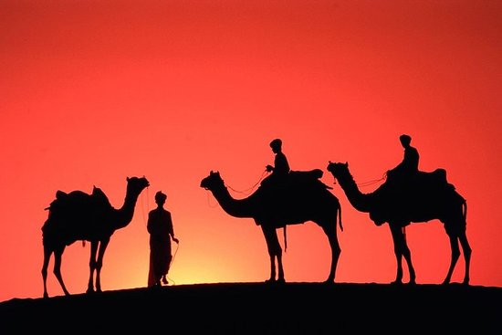Sunset Camel Ride Tour i Marrakech...