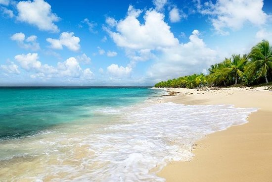 Punta Cana Day Trip: Catalina Island...