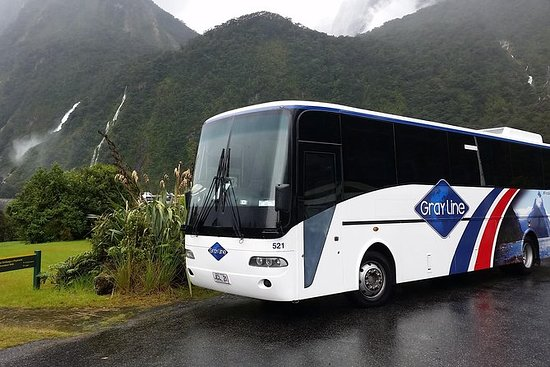 Full-Day Luxury Milford Sound Tour by...