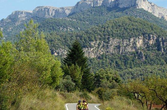 Excursión en bicicleta por Cataluña...