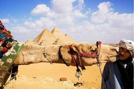 Day Tour to Cairo from Hurghada by...