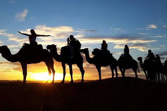 マラケシュからのザゴラ砂漠2日ツアー