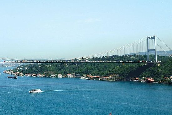 Bosphorus Strait Cruise and City Bus...
