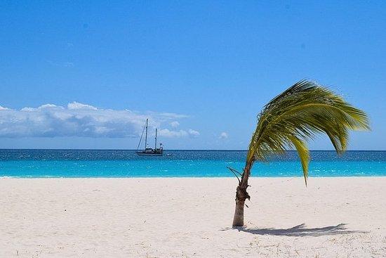巴巴多斯天堂观光旅游