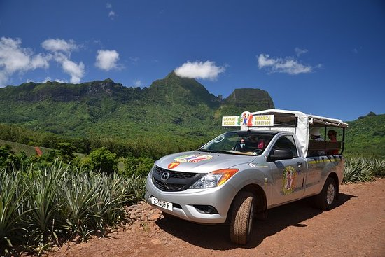 Moorea 4WD Tour Including Belvedere...