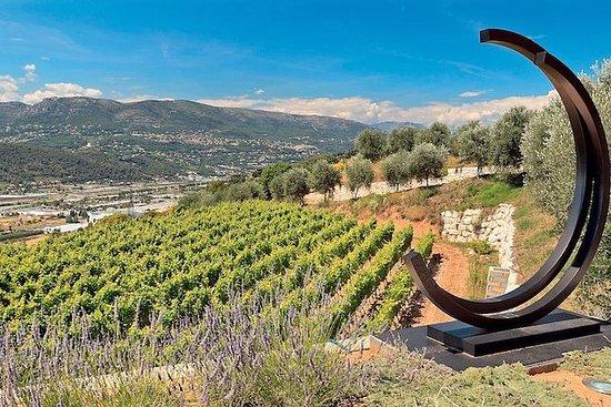 尼斯的4小时普罗旺斯有机葡萄酒品尝之旅
