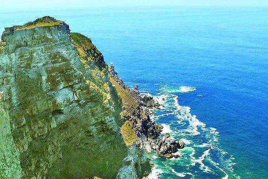 Excursão de meio dia em Cape Point...