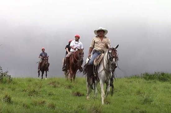 Tour a Caballo, Tirolesa y Aguas...