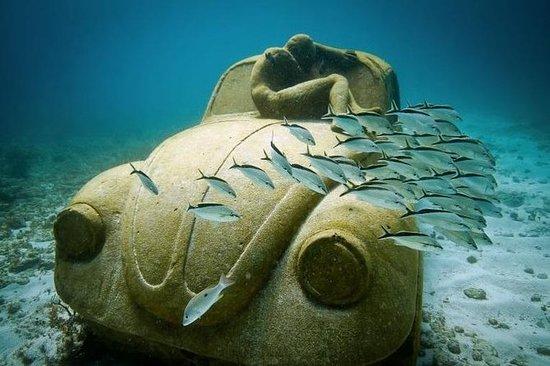 Excursión en catamarán a Isla Mujeres...