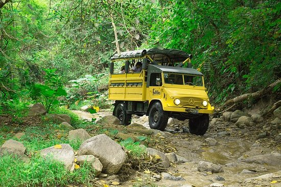 Off-Road Adventure: Traditional...