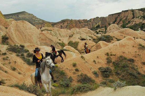 Randonnée à cheval à travers la...
